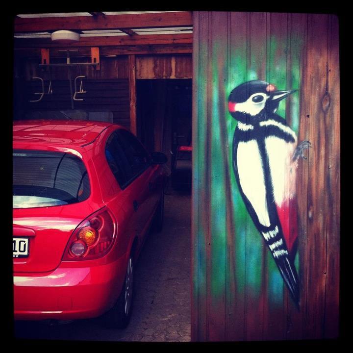 Graffiti Auftrag Bremen - Specht an Garage