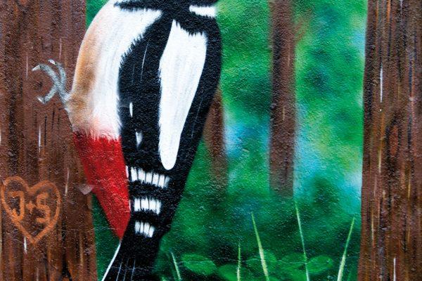 Graffiti Eckernförde Specht