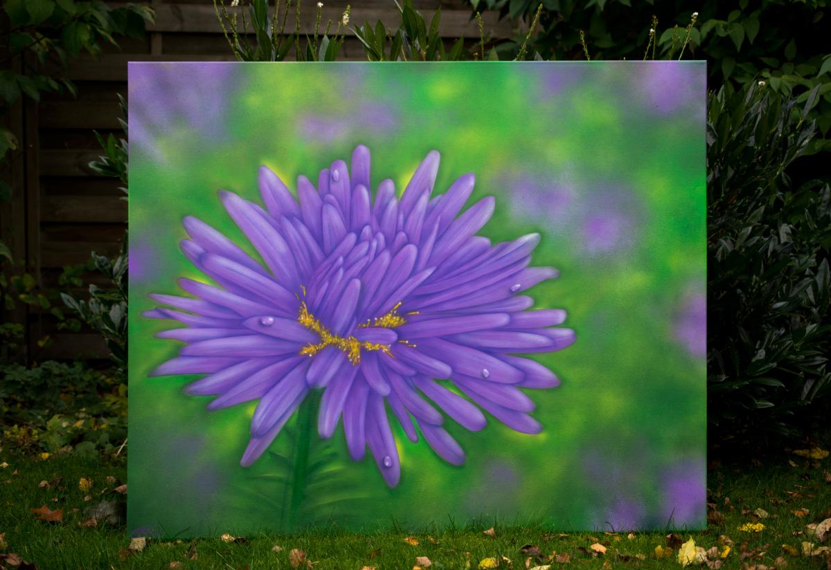Leinwand Blume - Aster Lila