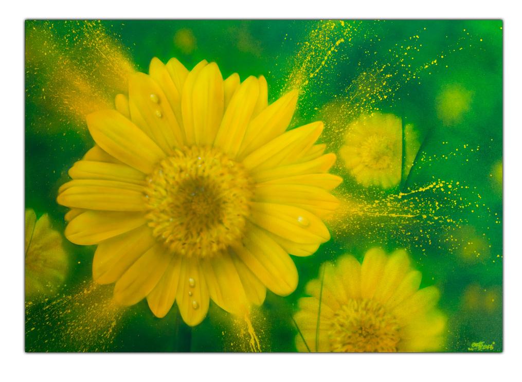 Leinwand Graffiti Streetart Airbrush Gelbe Blume
