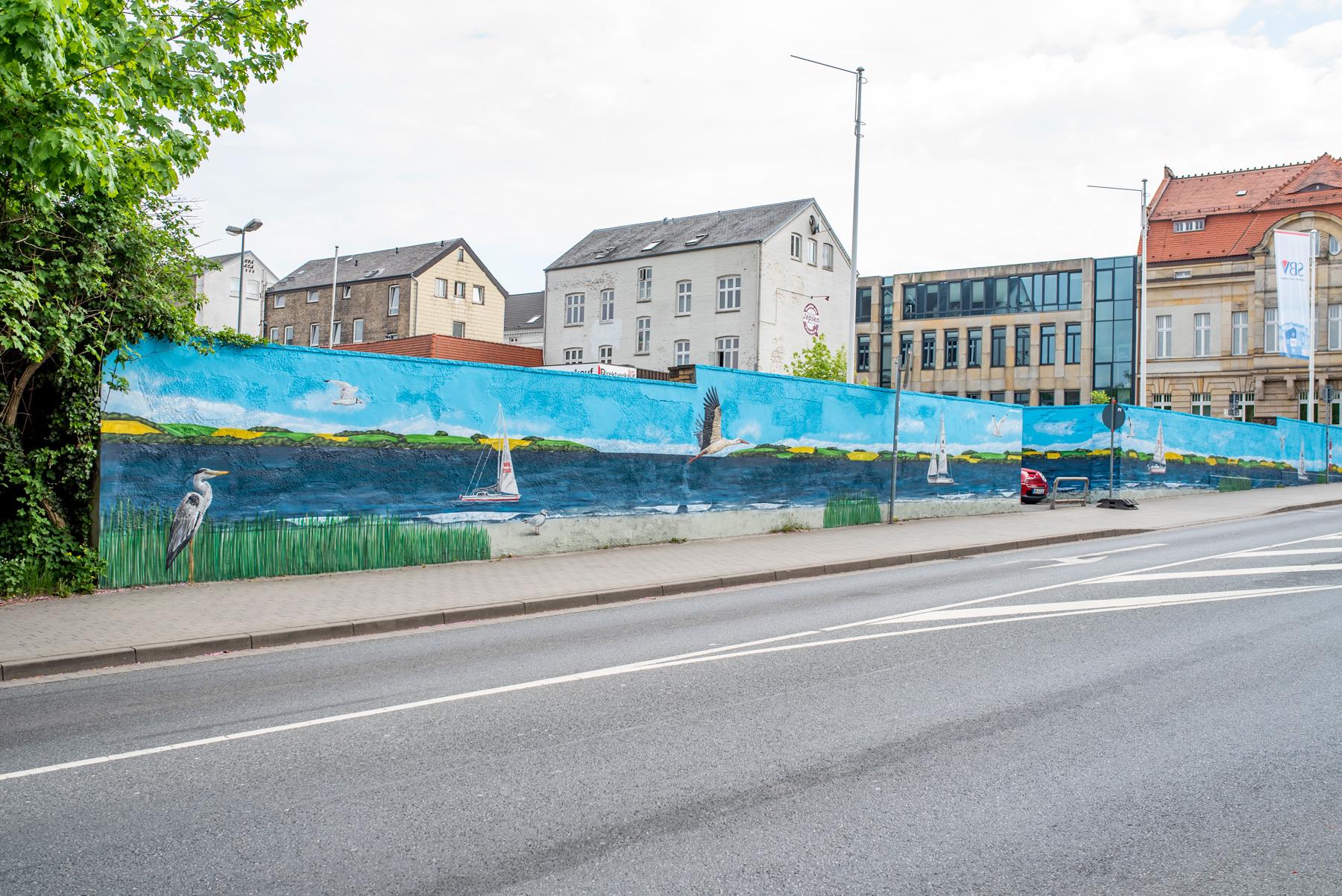 Graffiti Fassaden Kunst in Flensburg