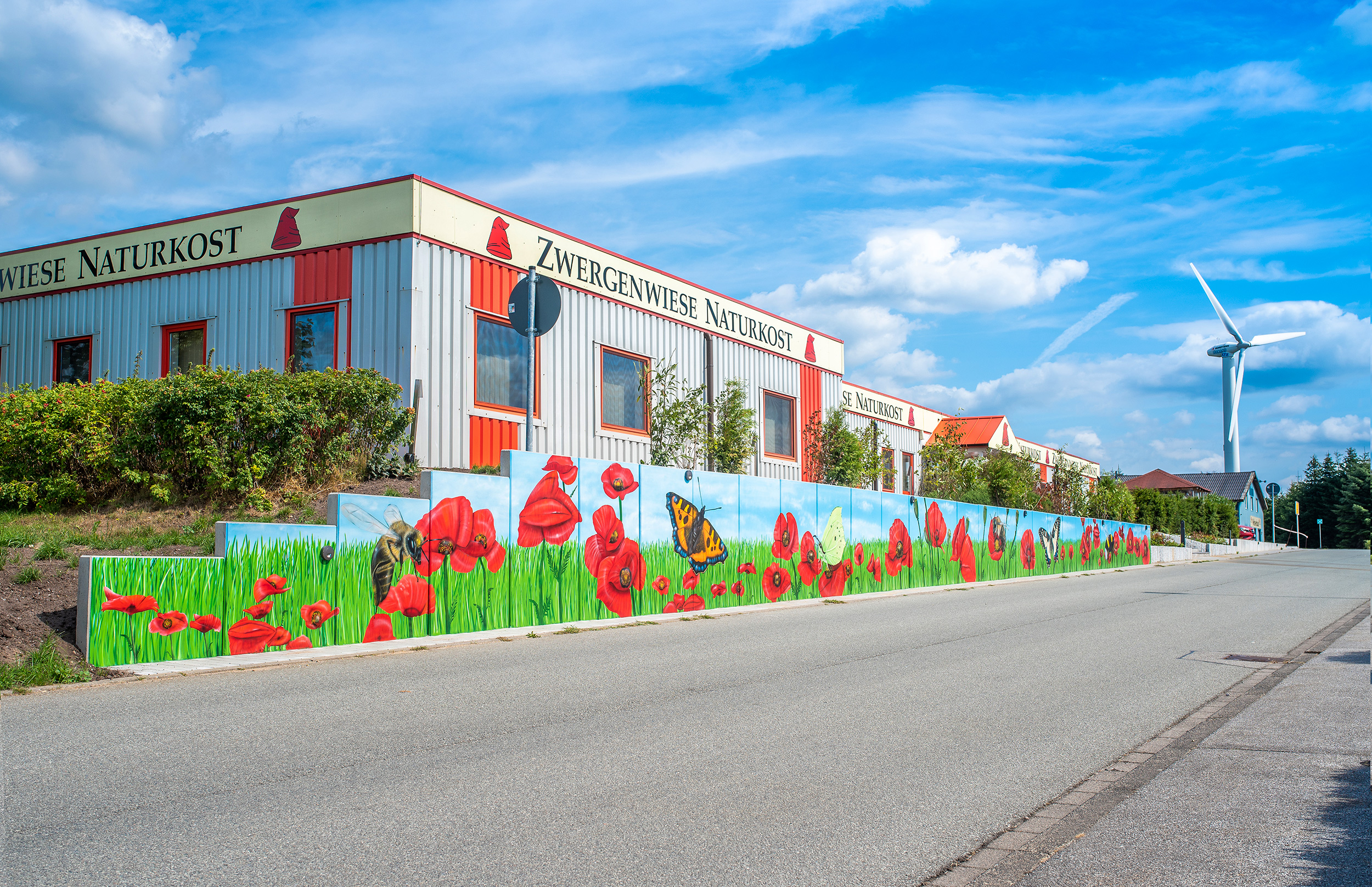 Graffiti maler graffiti k nstler f r fassadengestaltung und wandmalerei - Graffiti zimmerwand ...