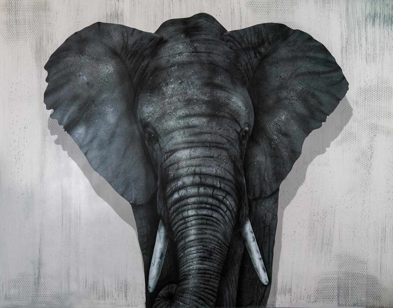 Leinwand mit Elefant 2,50m x 2m