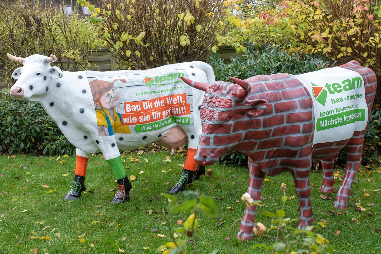 Graffiti Künstler Hamburg Kunst auf Kühen