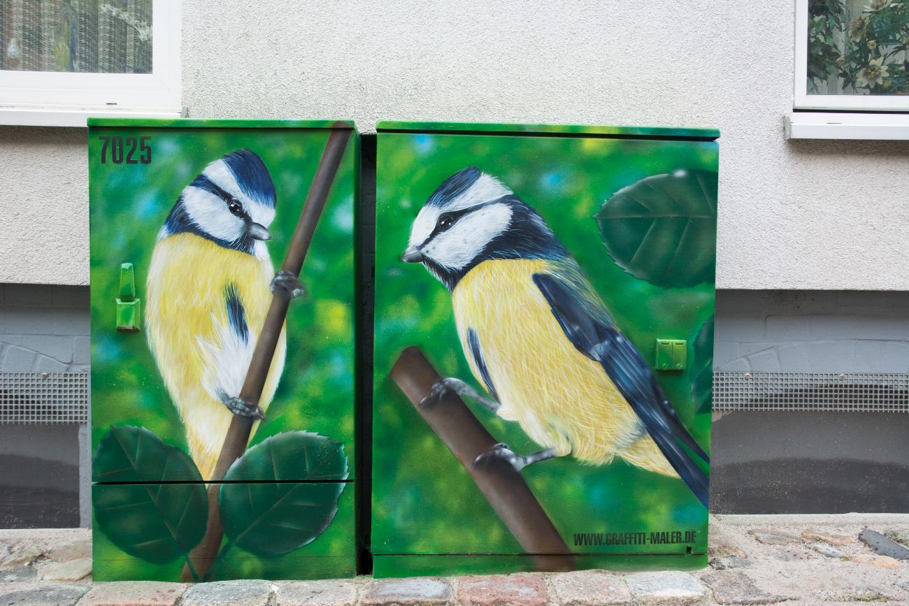 stromkasten_graffiti_maler_meisen_voegel_flensburg_stromfarben_01
