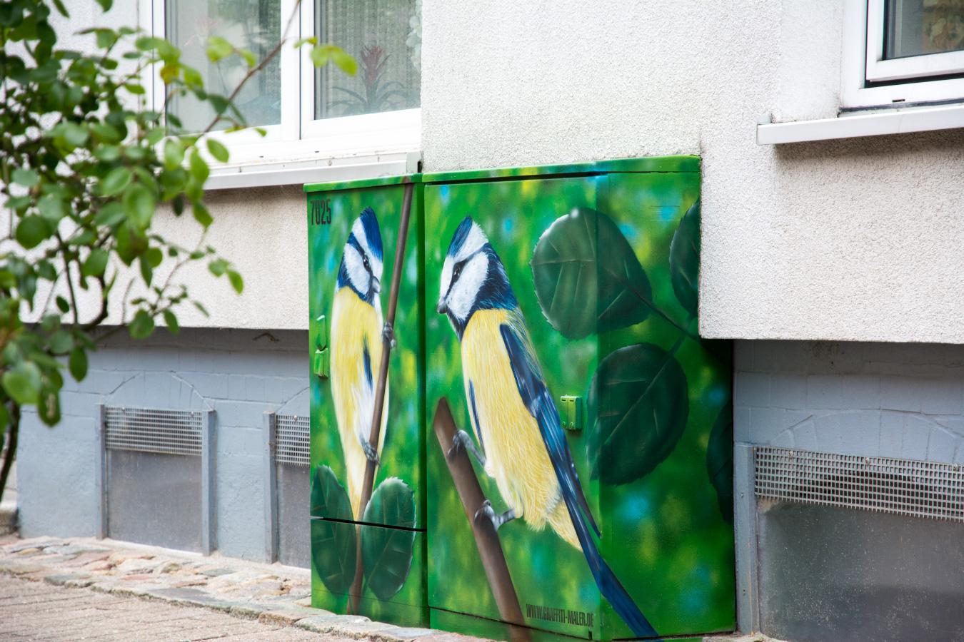 stromkasten_graffiti_maler_meisen_voegel_flensburg_stromfarben_02
